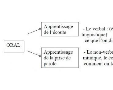 L'enseignement du français langue étrangère en 3ème A.P.