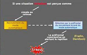 Situation-faussement-simple.jpg