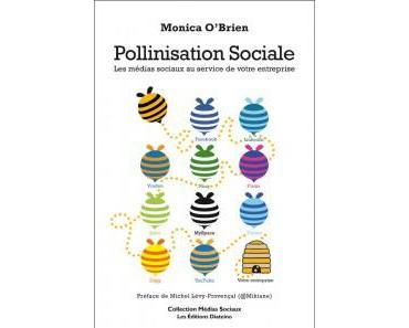 Pollinisation Sociale (Les médias sociaux au service de votre entreprise), Monica O'Brien et LeWeb 2010