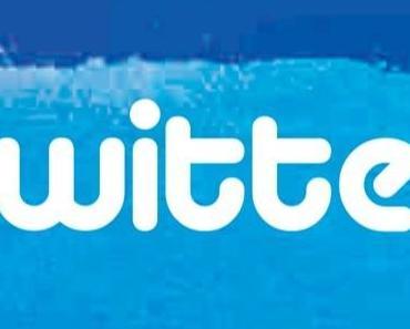 Sortie de «101 Questions sur Twitter» le 28/06 ! #101TWIT