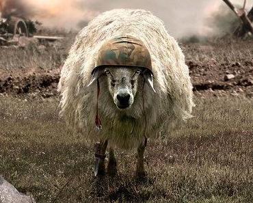 L'année du mouton à 6 pattes ?