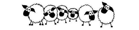 mouton candidat recrutement