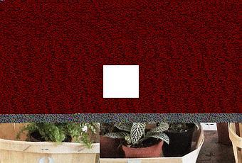 caisse d pargne nord france europe premium partner la soir e de recrutement plug work lille. Black Bedroom Furniture Sets. Home Design Ideas