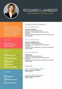 cv-assistante-mycvfactory-affirme-0