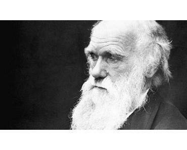 L'externalité positive dans le monde du travail ou Darwin adapté à l'emploi