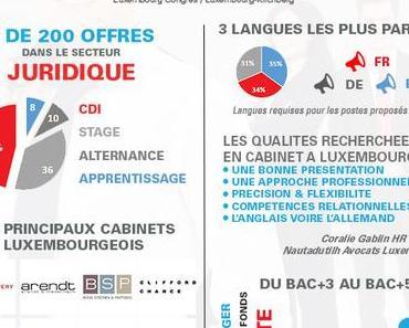 Juridique : Comment se préparer pour décrocher un stage ou un CDI à Luxembourg?