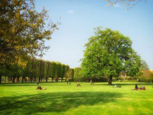 Valorisez votre patrimoine, redynamisez votre parc public !
